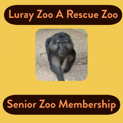 Zoo Membership Senior (Ages 56 and up)