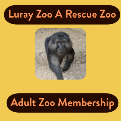 Zoo Membership Adult (Ages 13 - 55)